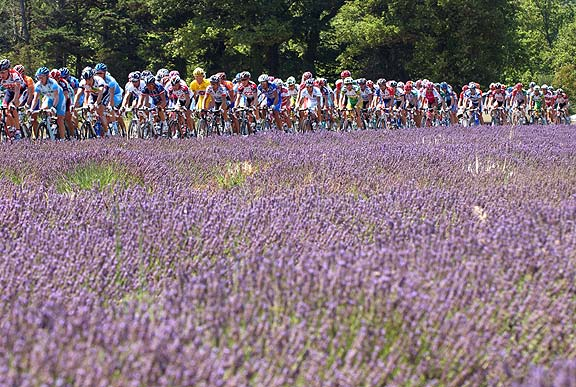 provence_stage_15